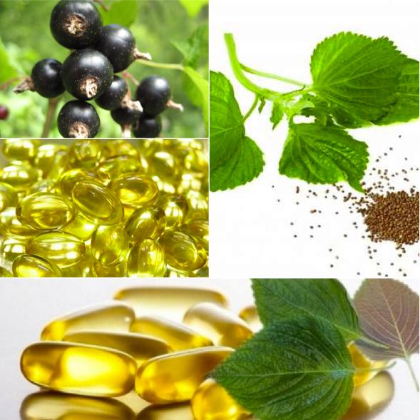 Olio di semi di Perilla e olio di semi di Ribes Nero