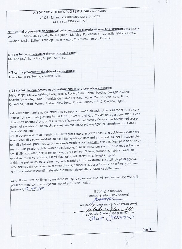 bilancio-2013-pag-3